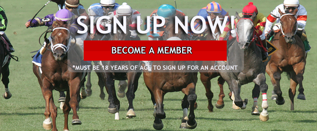 WagerLiveRacing Signup